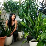 Growing Annual Plants