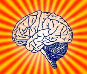 Science Psychology Biology Brain Brain Research